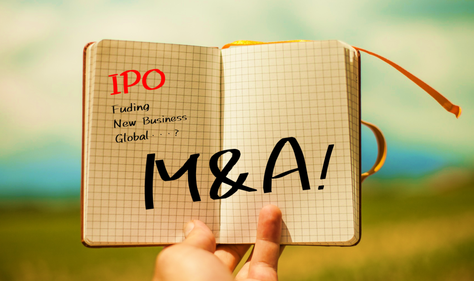 IPO準備段階でのM&Aを成長戦略の一つとして選択する企業が増えています。企業価値の増加というメリットに反して上場準備負荷増大というデメリットも・・・2019年IPO企業の事例から見る留意点を解説します。